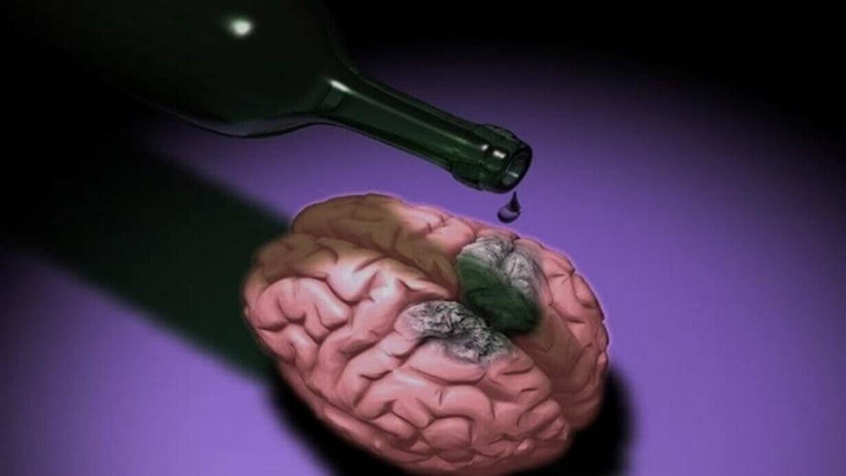 воздействие алкоголя на мозг